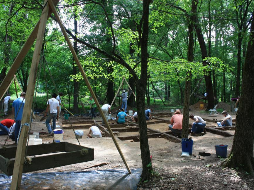 students work at an archaeological dig in the woods